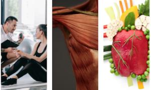 fitness entrenamiento personal fundamentos nutrición